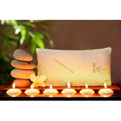 ALMOHADA VISCO CON AROMA BODY-MILK Y TRATAMIENTO ALOE VERA